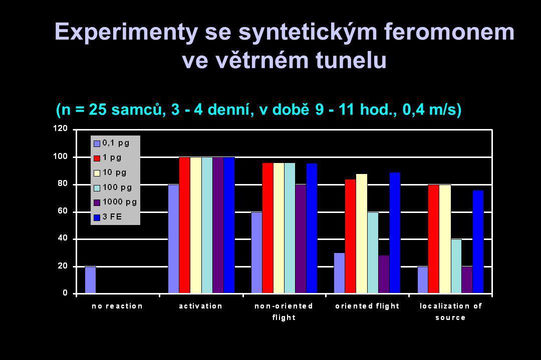 Experimenty se syntetickým feromonem ve větrném tunelu (n = 25 samců, 3 - 4 denní, v době 9 - 11 hod., 0,4 m/s)