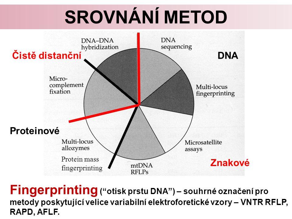 SROVNÁNÍ METOD Fingerprinting ( otisk prstu DNA ) – souhrné označení pro metody poskytující velice variabilní elektroforetické vzory – VNTR RFLP, RAPD, AFLF.