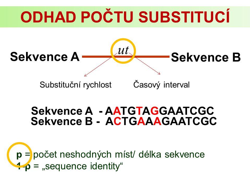 "Sekvence A Sekvence B ut Substituční rychlostČasový interval Sekvence A - AATGTAGGAATCGC Sekvence B - ACTGAAAGAATCGC p = počet neshodných míst/ délka sekvence 1-p = ""sequence identity ODHAD POČTU SUBSTITUCÍ"