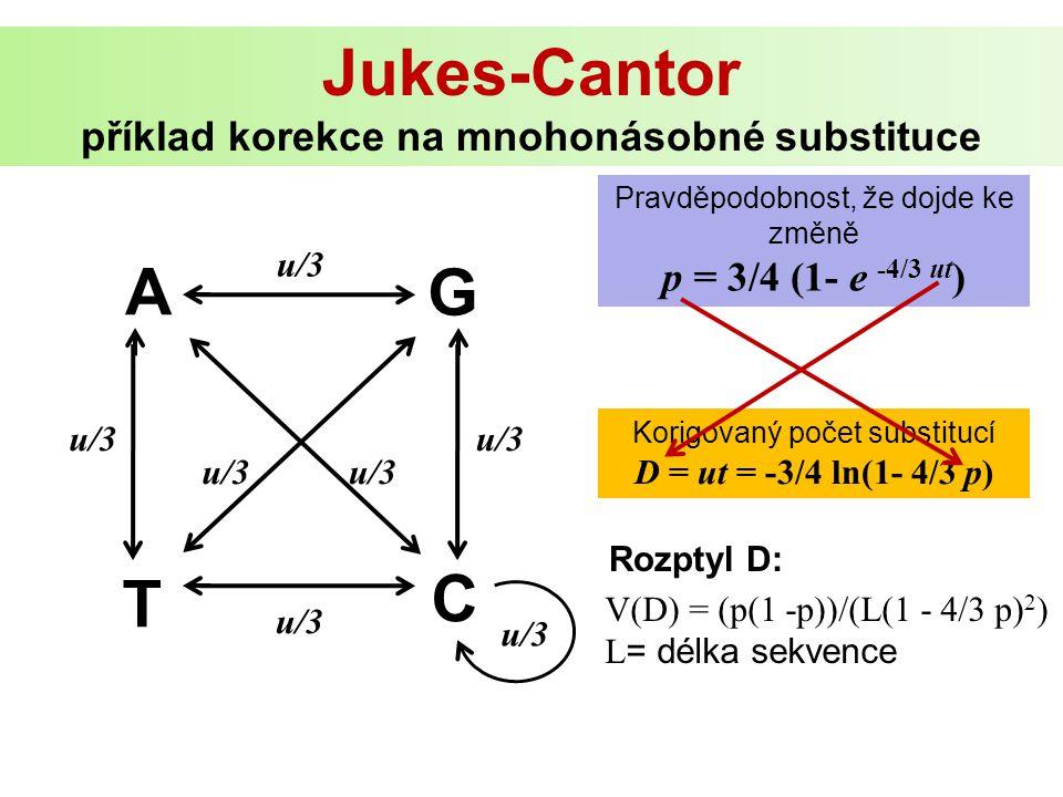 A G C T u/3 Pravděpodobnost, že dojde ke změně p = 3/4 (1- e -4/3 ut ) Korigovaný počet substitucí D = ut = -3/4 ln(1- 4/3 p) u/3 Jukes-Cantor příklad korekce na mnohonásobné substituce V(D) = (p(1 -p))/(L(1 - 4/3 p) 2 ) L = délka sekvence Rozptyl D: