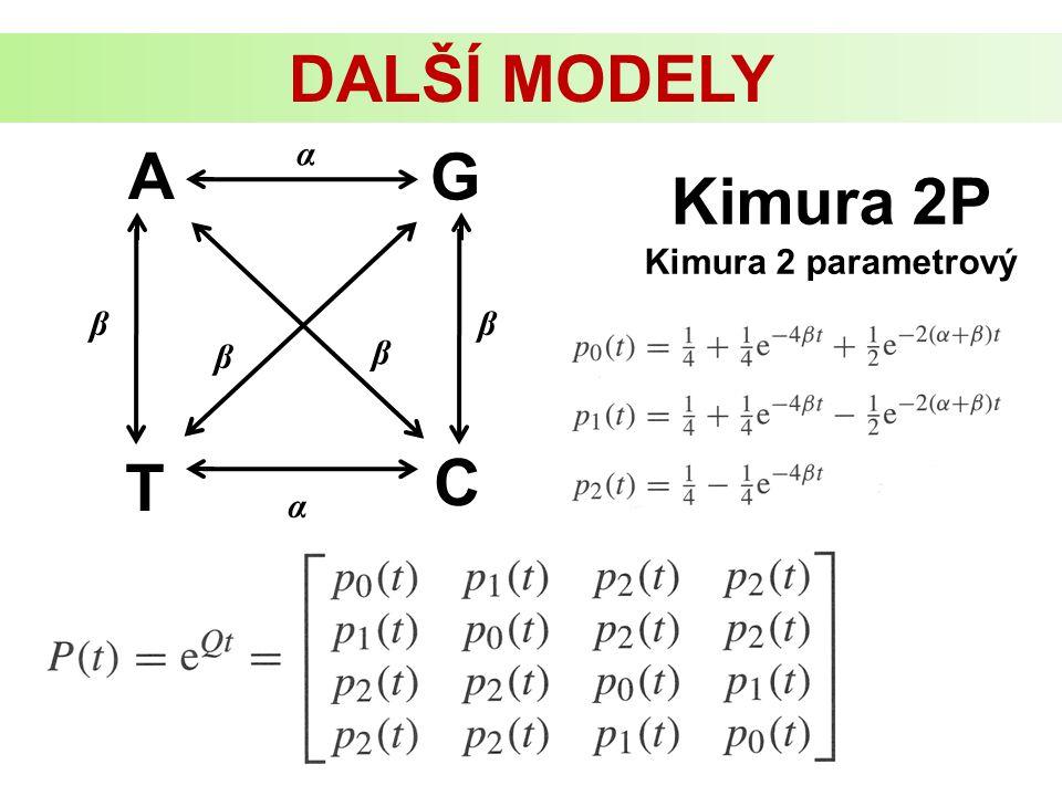 Kimura 2P Kimura 2 parametrový DALŠÍ MODELY A G C T α ββ β β α