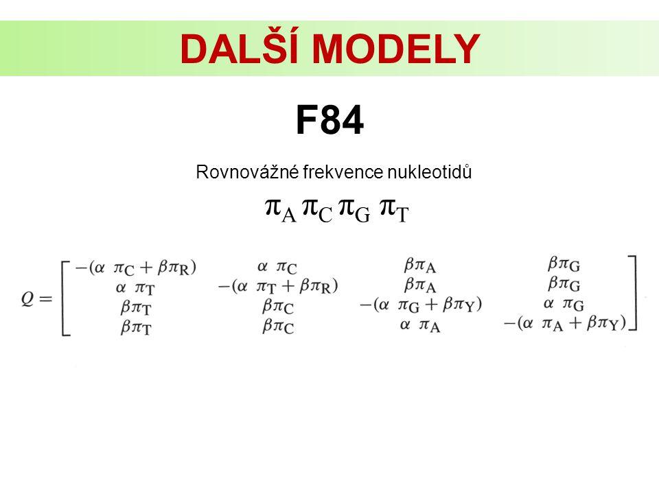 DALŠÍ MODELY Rovnovážné frekvence nukleotidů π A π C π G π T F84