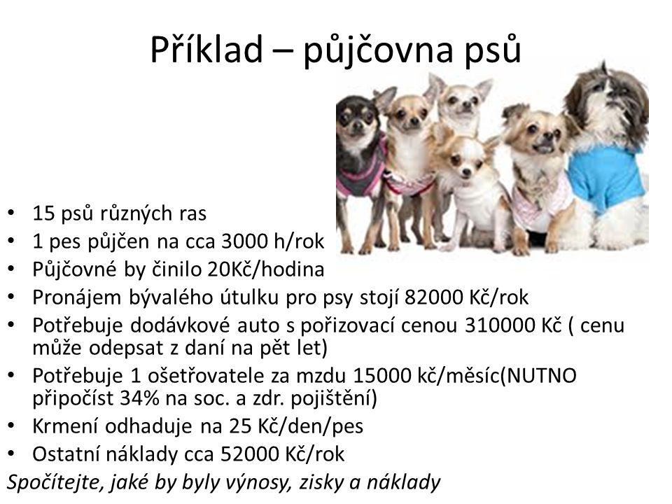 Příklad – půjčovna psů 15 psů různých ras 1 pes půjčen na cca 3000 h/rok Půjčovné by činilo 20Kč/hodina Pronájem bývalého útulku pro psy stojí 82000 K