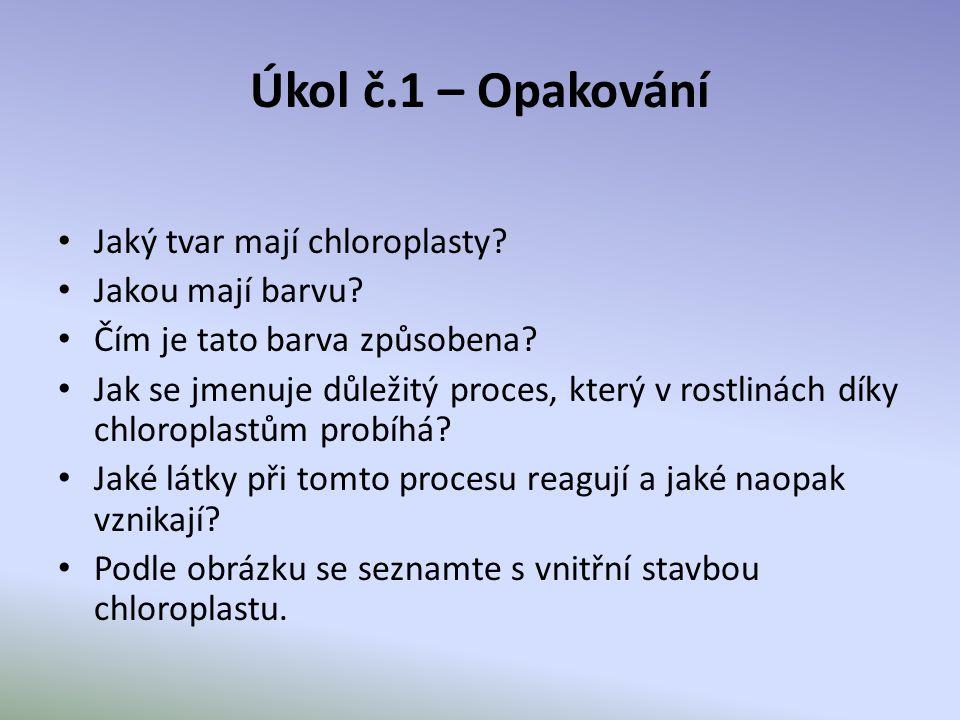 Úkol č.1 – Opakování Jaký tvar mají chloroplasty? Jakou mají barvu? Čím je tato barva způsobena? Jak se jmenuje důležitý proces, který v rostlinách dí