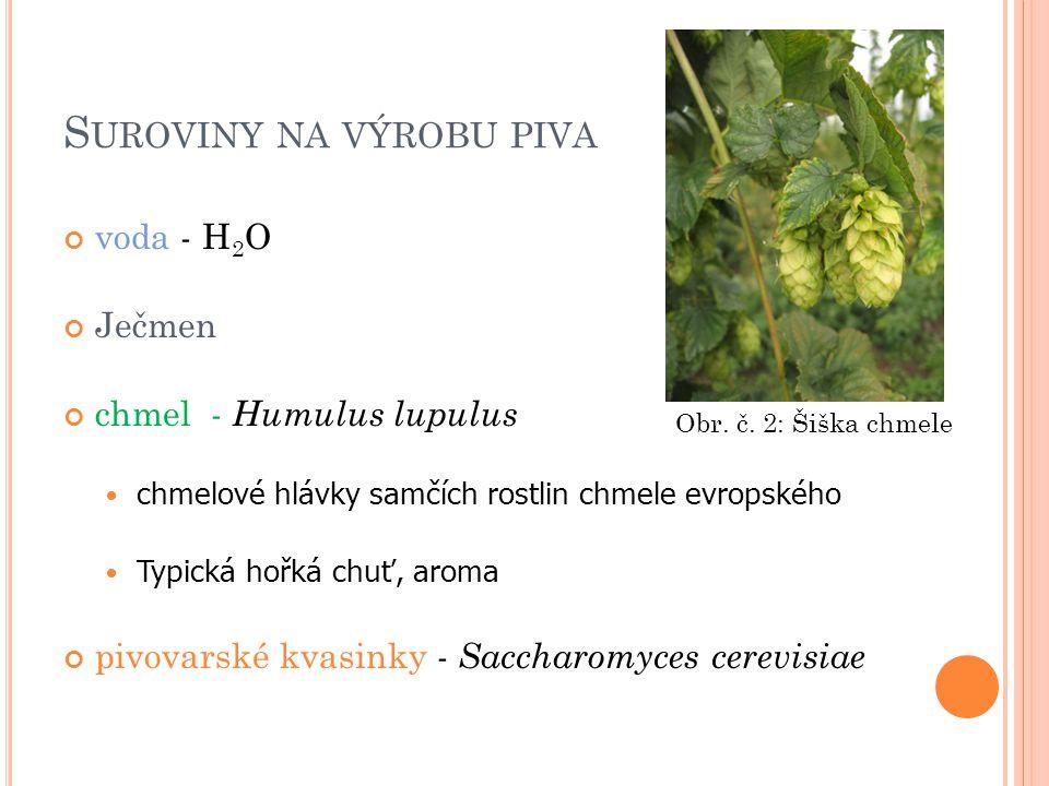 S UROVINY NA VÝROBU PIVA voda - H 2 O Ječmen chmel - Humulus lupulus chmelové hlávky samčích rostlin chmele evropského Typická hořká chuť, aroma pivovarské kvasinky - Saccharomyces cerevisiae Obr.
