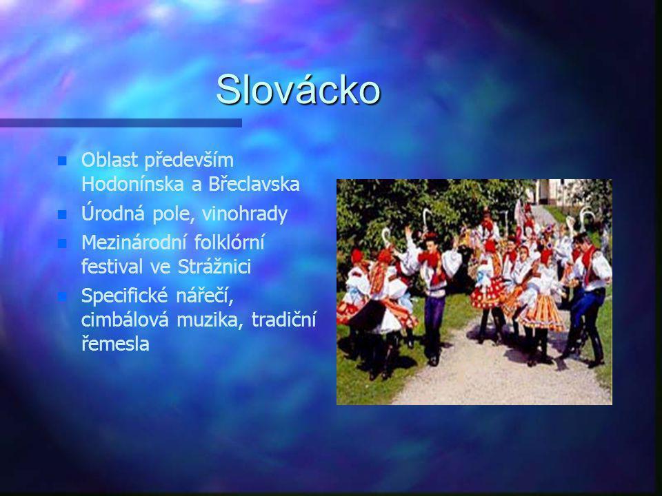 Kultura v kraji n Slovácko n Znojemsko n Brněnsko a okolí n oblast Moravského krasu