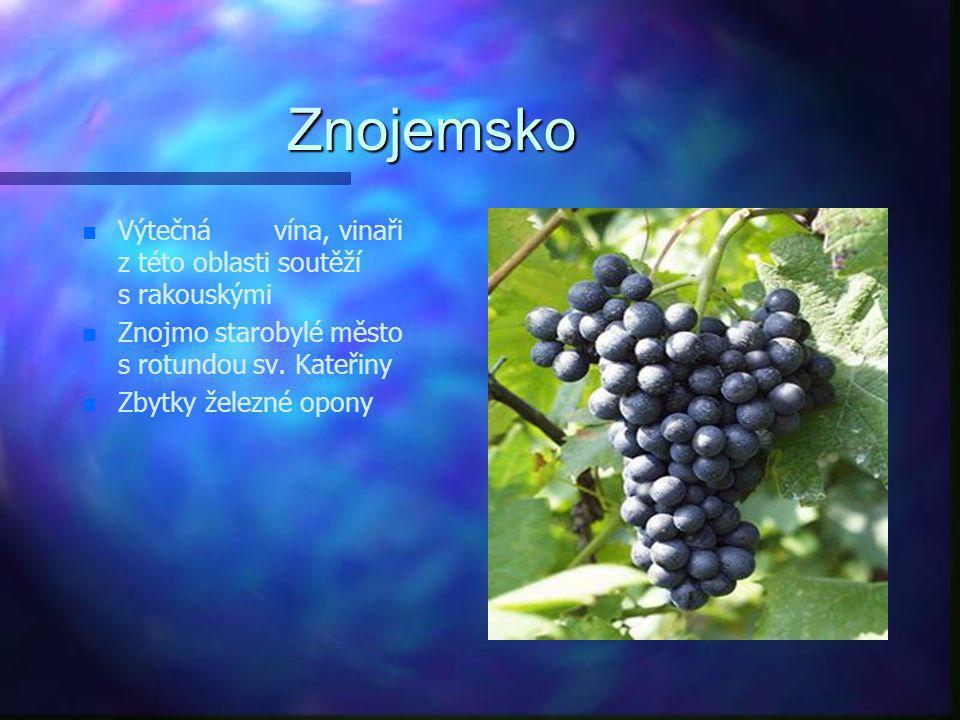 Slovácko n n Oblast především Hodonínska a Břeclavska n n Úrodná pole, vinohrady n n Mezinárodní folklórní festival ve Strážnici n n Specifické nářečí