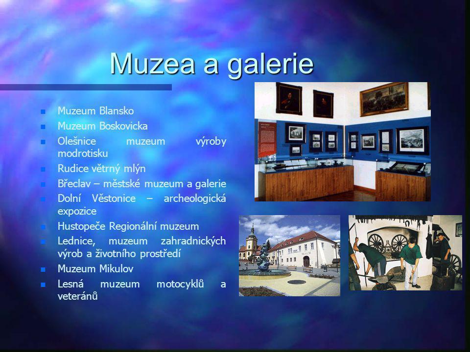 Muzea a galerie n n Brno Dietrichsteinský palác n n Brno Dům umění n n Brno Měníská brána n n Brno MZM Biskupský dvůr n n Brno MZM Anthropos n n Brno
