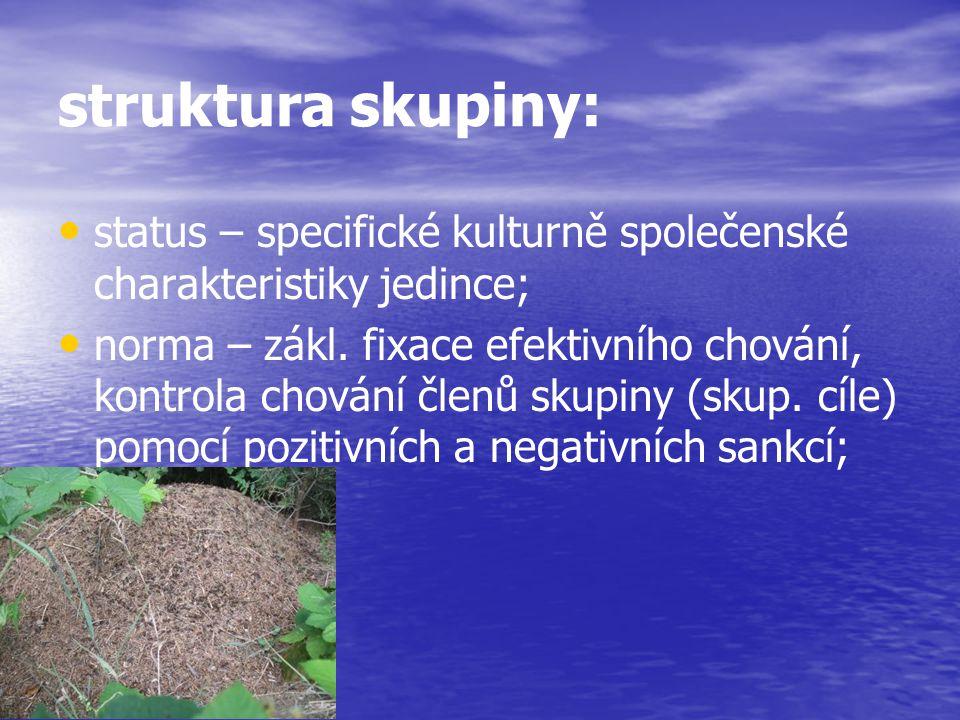 struktura skupiny: status – specifické kulturně společenské charakteristiky jedince; norma – zákl. fixace efektivního chování, kontrola chování členů