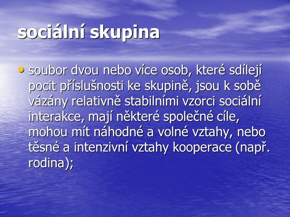 struktura skupiny: status – specifické kulturně společenské charakteristiky jedince; norma – zákl.