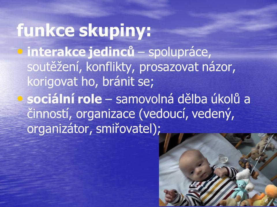funkce skupiny: sebeuplatňování jedince – umožňují jedinci uspokojování jeho sociálních potřeb; normativní a srovnávací funkce – poskytuje jedinci srovnávací rámec pro jeho postoje a jednání, utváří jeho pojetí sociální reality a jeho sociálních rolí; mínění skupiny je kriteriem výkonu jedince;