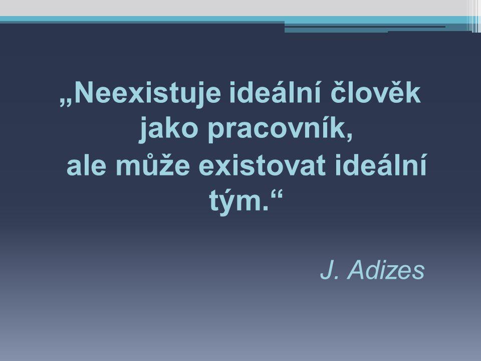 """""""Neexistuje ideální člověk jako pracovník, ale může existovat ideální tým. J. Adizes"""