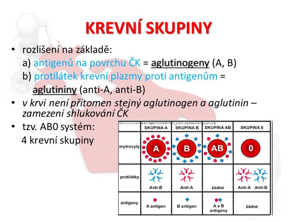 Rhesus (Rh) faktor další antigen na povrchu ČK objeven v krvi opice Macacus rhesus přítomnost antigenu = Rh + krev nepřítomnost = Rh - http://www.haryana-online.com/images/rhesus_macaque.jpg
