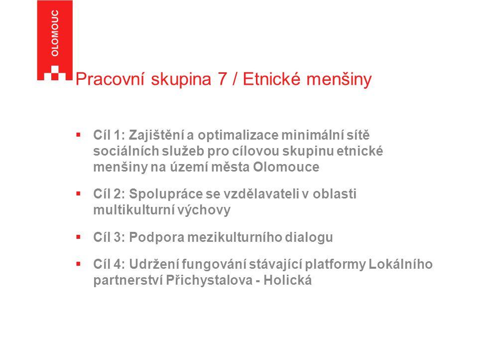 Pracovní skupina 7 / Etnické menšiny  Cíl 1: Zajištění a optimalizace minimální sítě sociálních služeb pro cílovou skupinu etnické menšiny na území města Olomouce  Cíl 2: Spolupráce se vzdělavateli v oblasti multikulturní výchovy  Cíl 3: Podpora mezikulturního dialogu  Cíl 4: Udržení fungování stávající platformy Lokálního partnerství Přichystalova - Holická