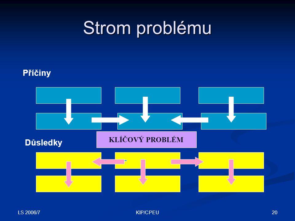 LS 2006/7 20KIP/CPEU Strom problému Příčiny Důsledky KLÍČOVÝ PROBLÉM