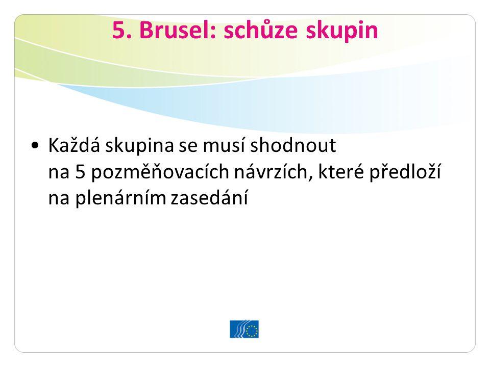 5. Brusel: schůze skupin Každá skupina se musí shodnout na 5 pozměňovacích návrzích, které předloží na plenárním zasedání