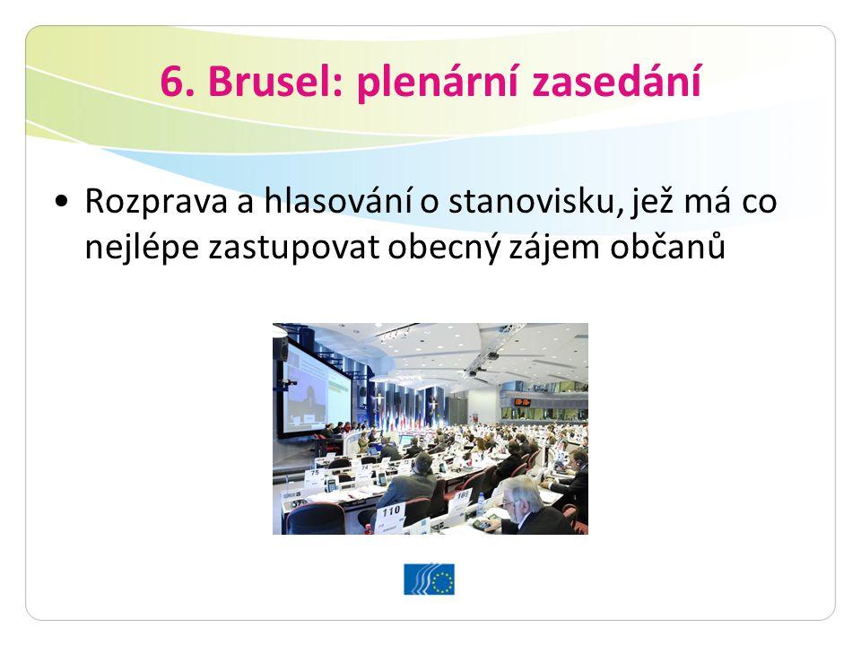 6. Brusel: plenární zasedání Rozprava a hlasování o stanovisku, jež má co nejlépe zastupovat obecný zájem občanů