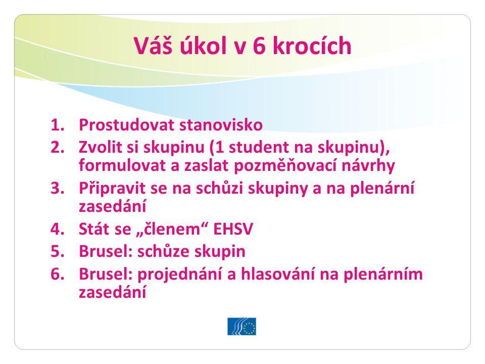 """Váš úkol v 6 krocích 1.Prostudovat stanovisko 2.Zvolit si skupinu (1 student na skupinu), formulovat a zaslat pozměňovací návrhy 3.Připravit se na schůzi skupiny a na plenární zasedání 4.Stát se """"členem EHSV 5.Brusel: schůze skupin 6.Brusel: projednání a hlasování na plenárním zasedání"""