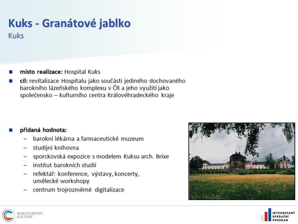 Kuks - Granátové jablko Kuks místo realizace: Hospital Kuks místo realizace: Hospital Kuks cíl: revitalizace Hospitalu jako součásti jediného dochovan