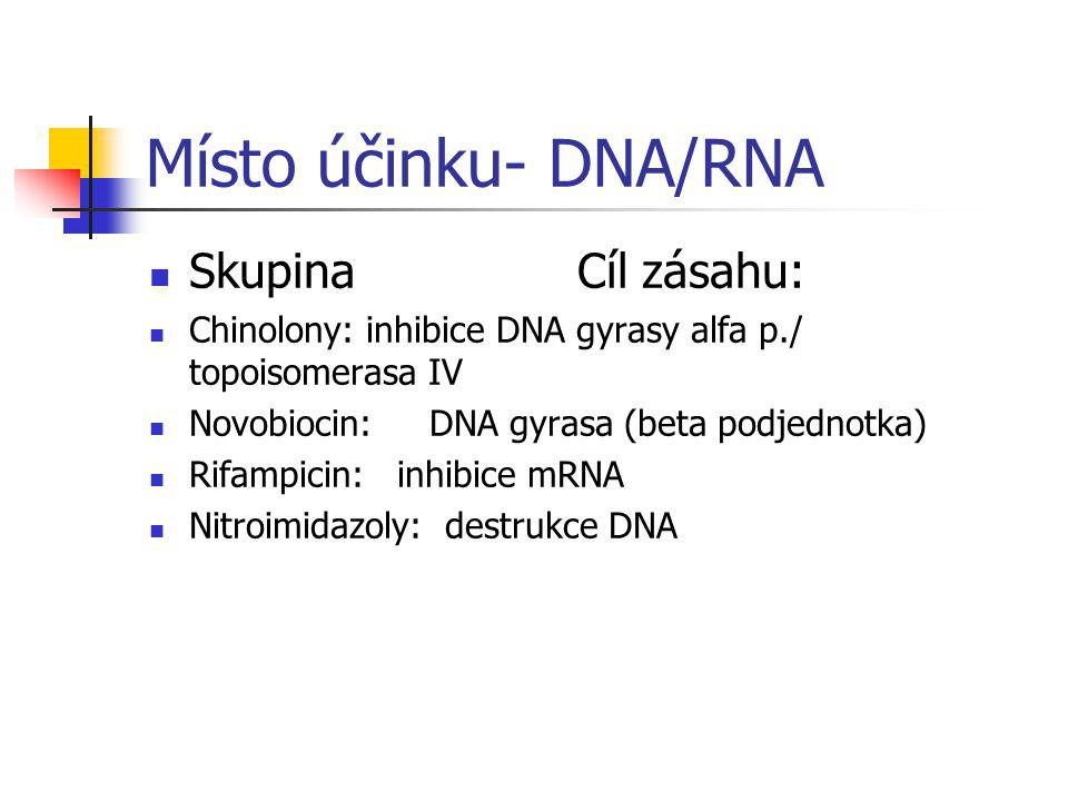 Místo účinku- DNA/RNA Skupina Cíl zásahu: Chinolony: inhibice DNA gyrasy alfa p./ topoisomerasa IV Novobiocin: DNA gyrasa (beta podjednotka) Rifampici