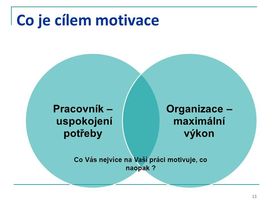 15 Co je cílem motivace Pracovník – uspokojení potřeby Organizace – maximální výkon Co Vás nejvíce na Vaší práci motivuje, co naopak ?