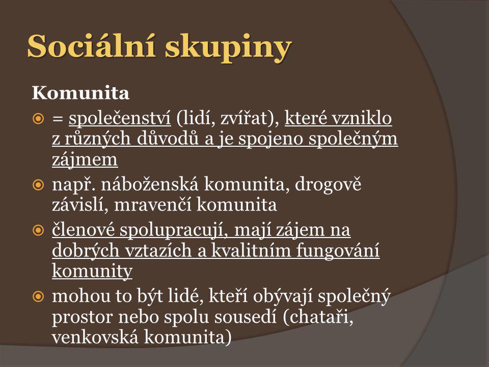 Sociální skupiny Komunita  = společenství (lidí, zvířat), které vzniklo z různých důvodů a je spojeno společným zájmem  např.