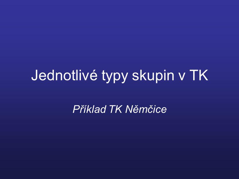 Jednotlivé typy skupin v TK Příklad TK Němčice