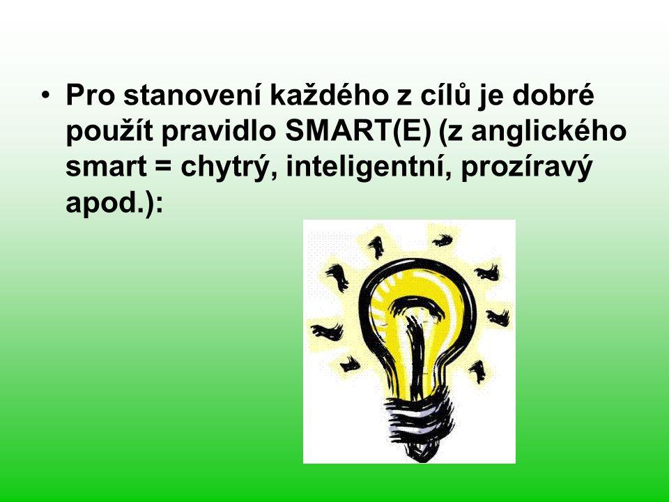 Pro stanovení každého z cílů je dobré použít pravidlo SMART(E) (z anglického smart = chytrý, inteligentní, prozíravý apod.):