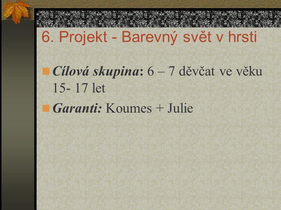 6. Projekt - Barevný svět v hrsti Cílová skupina: 6 – 7 děvčat ve věku 15- 17 let Garanti: Koumes + Julie
