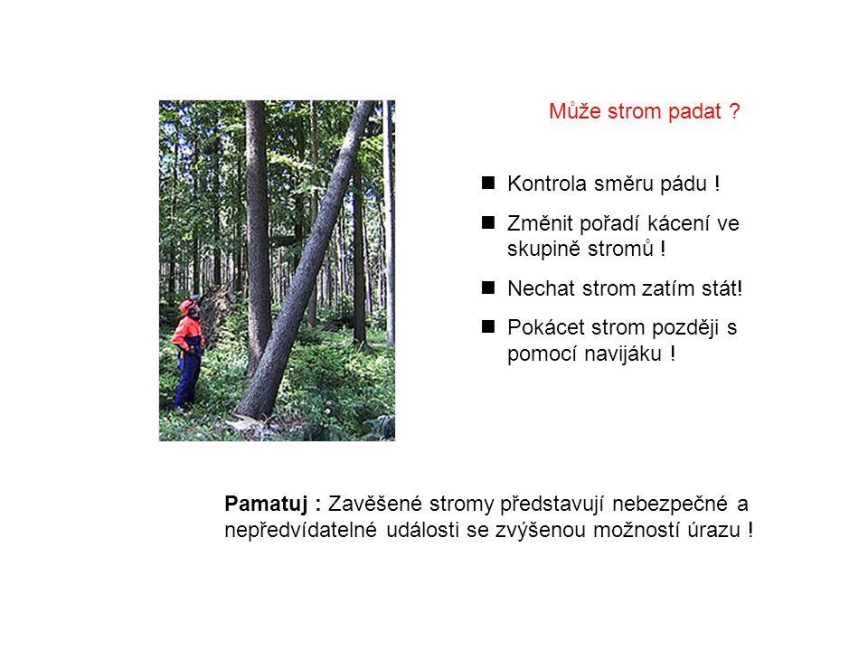 Pamatuj : Zavěšené stromy představují nebezpečné a nepředvídatelné události se zvýšenou možností úrazu .