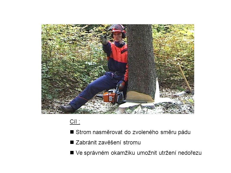 Cíl : n Strom nasměrovat do zvoleného směru pádu n Zabránit zavěšení stromu n Ve správném okamžiku umožnit utržení nedořezu