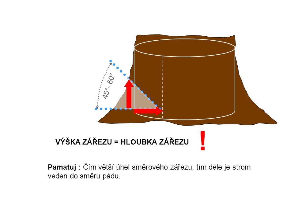 Pamatuj : Čím větší úhel směrového zářezu, tím déle je strom veden do směru pádu.