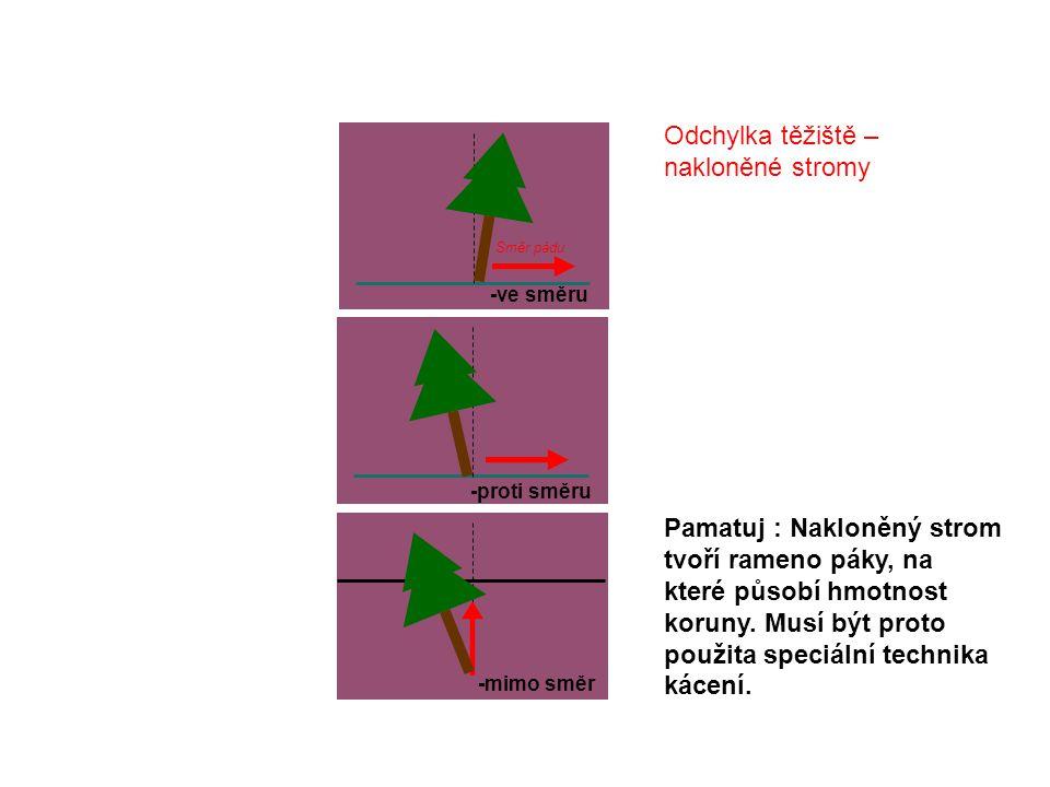 Odchylka těžiště – nakloněné stromy -proti směru -ve směru Směr pádu -mimo směr Pamatuj : Nakloněný strom tvoří rameno páky, na které působí hmotnost koruny.