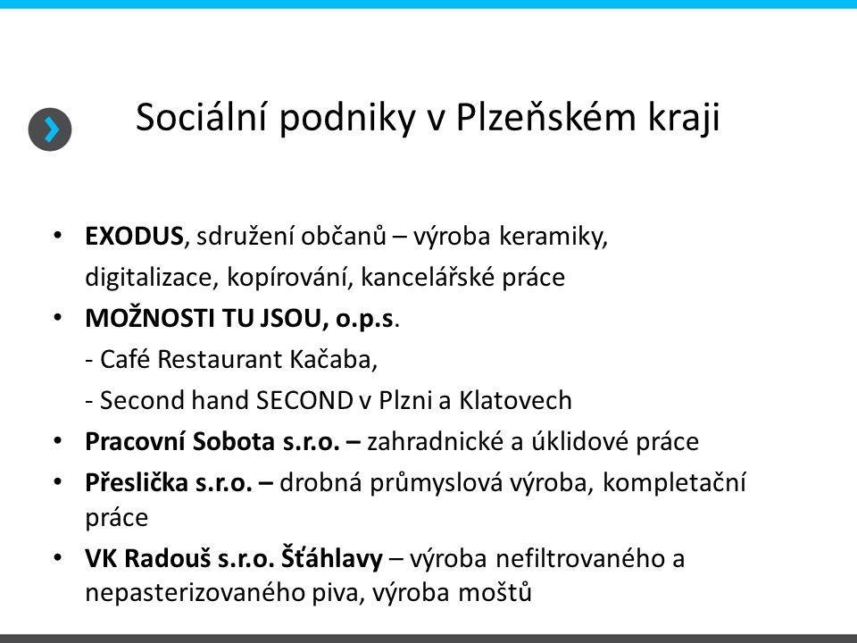 Sociální podniky v Plzeňském kraji EXODUS, sdružení občanů – výroba keramiky, digitalizace, kopírování, kancelářské práce MOŽNOSTI TU JSOU, o.p.s. - C
