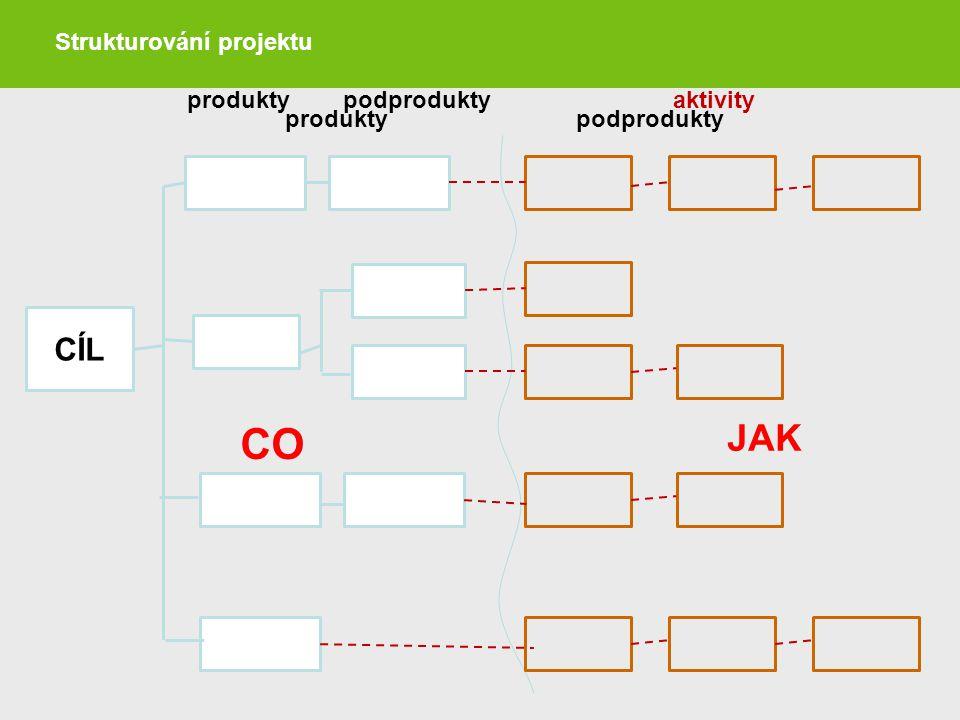Strukturování projektu produktypodprodukty CÍL produkty podproduktyaktivity CO JAK