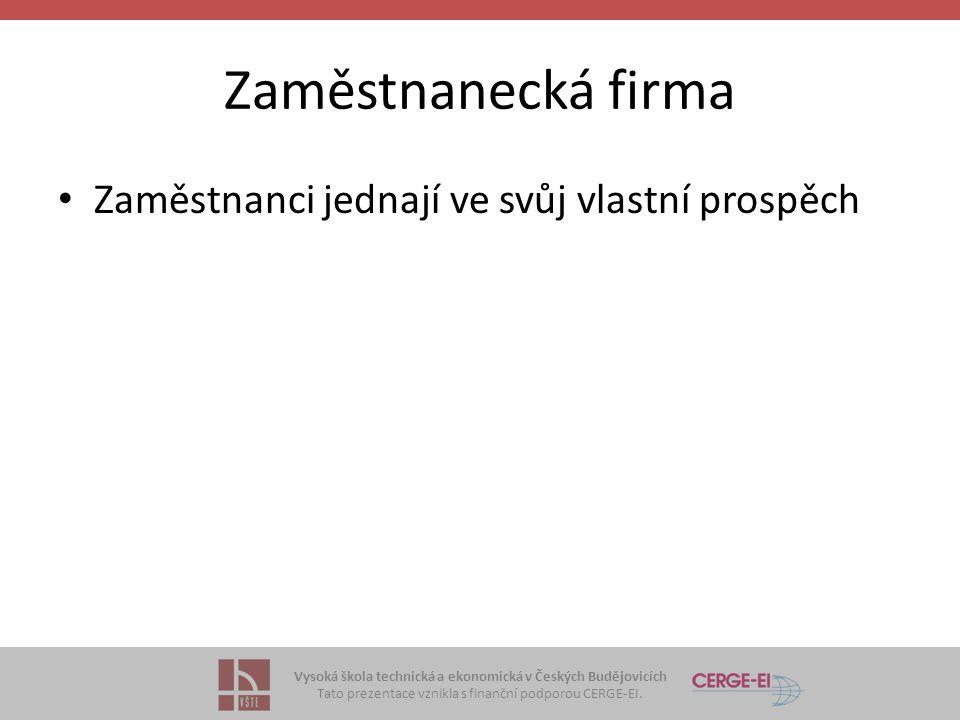 Vysoká škola technická a ekonomická v Českých Budějovicích Tato prezentace vznikla s finanční podporou CERGE-EI. Zaměstnanecká firma Zaměstnanci jedna