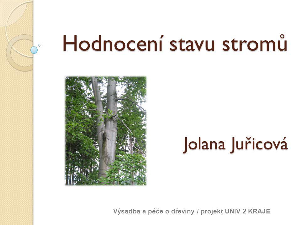 Hodnocení stavu stromů Jolana Juřicová Výsadba a péče o dřeviny / projekt UNIV 2 KRAJE