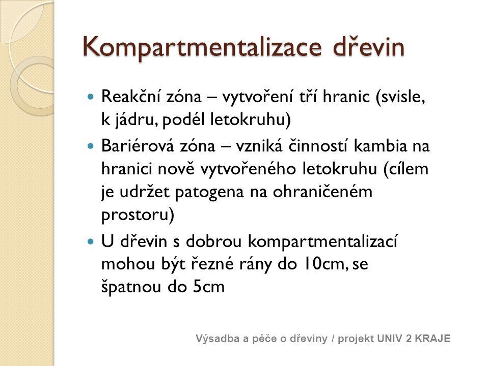 Kompartmentalizace dřevin Reakční zóna – vytvoření tří hranic (svisle, k jádru, podél letokruhu) Bariérová zóna – vzniká činností kambia na hranici no