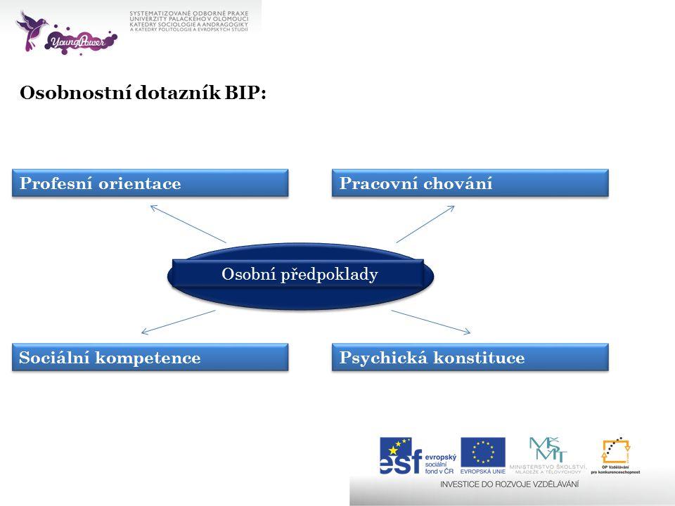 Osobnostní dotazník BIP: Profesní orientace Pracovní chování Sociální kompetence Psychická konstituce Osobní předpoklady