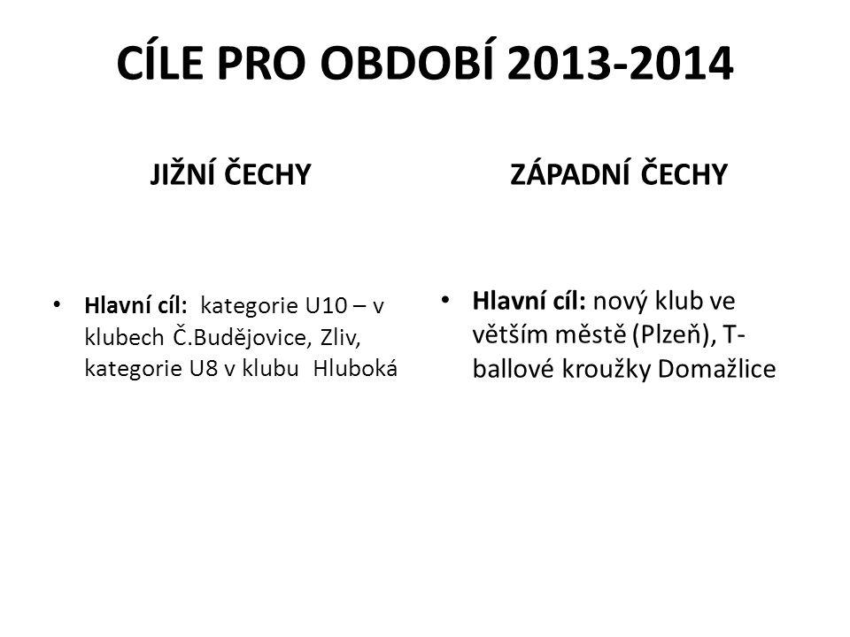 Finanční podpora oblastních výběrů LL a JL – garant Zatraktivnění a spolupráce s organizátorem Stříbrného Superpoháru - garant ÚKOLY 2013