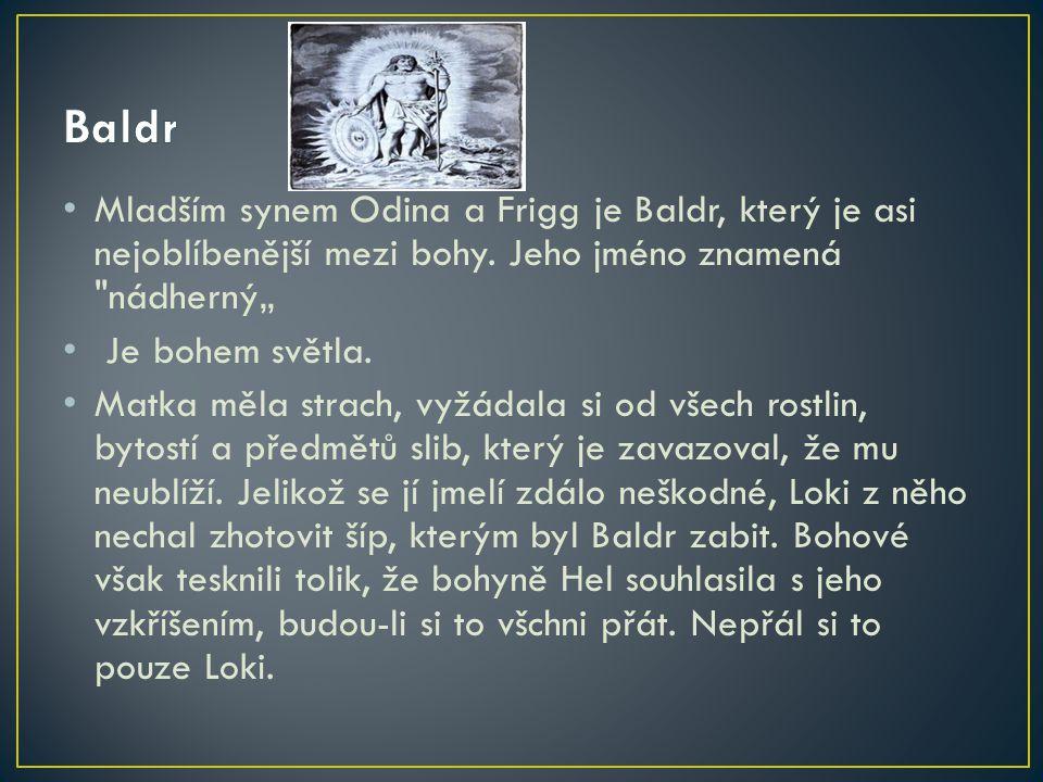 Mladším synem Odina a Frigg je Baldr, který je asi nejoblíbenější mezi bohy. Jeho jméno znamená