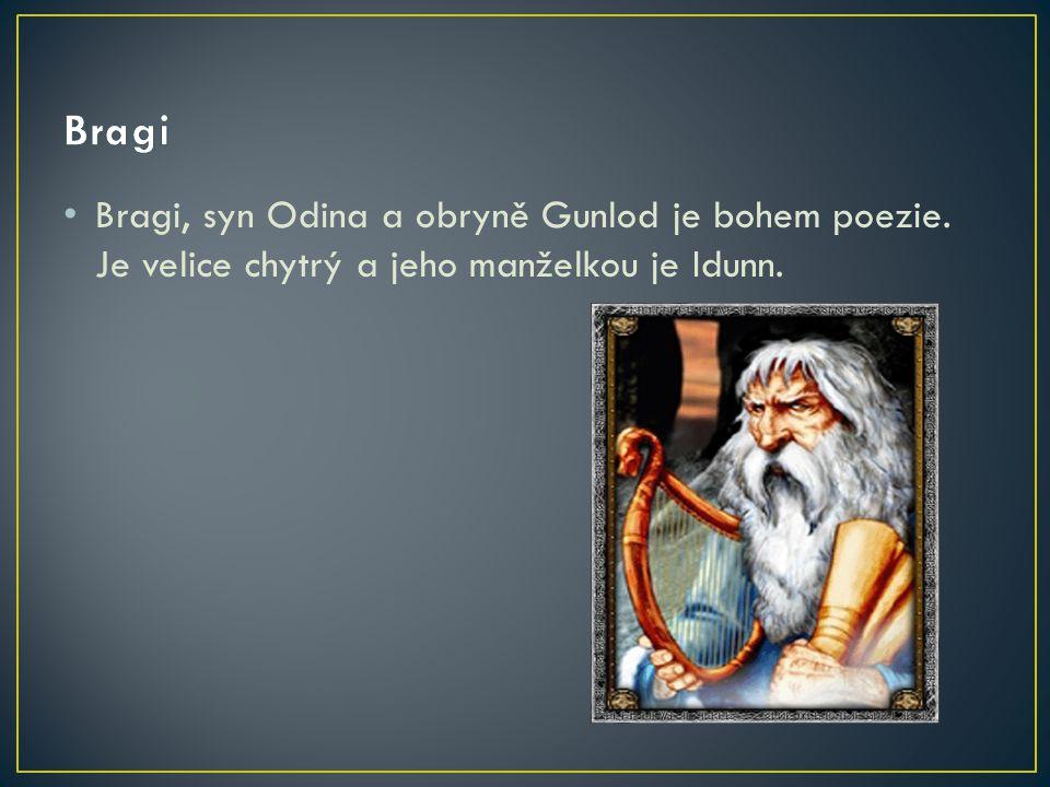 Bragi, syn Odina a obryně Gunlod je bohem poezie. Je velice chytrý a jeho manželkou je Idunn.