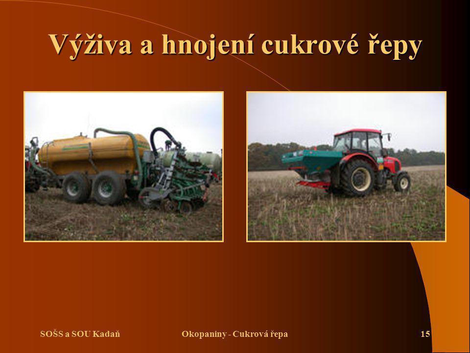 SOŠS a SOU KadaňOkopaniny - Cukrová řepa15 Výživa a hnojení cukrové řepy