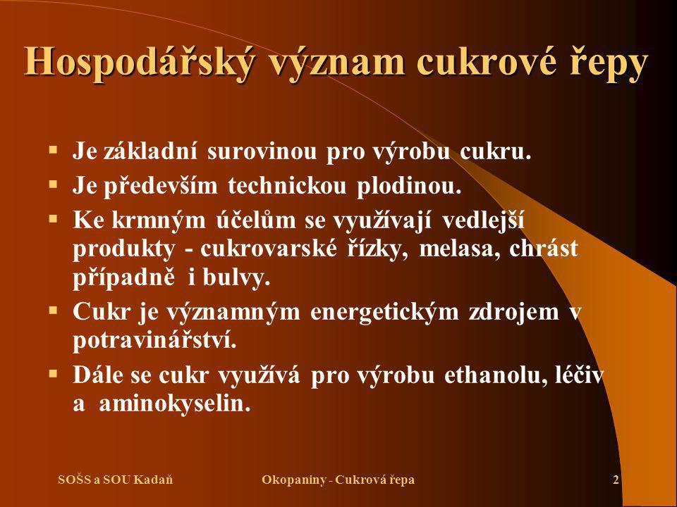 SOŠS a SOU KadaňOkopaniny - Cukrová řepa13 Výživa a hnojení cukrové řepy Průmyslové hnojení:  Hnojení fosforem a draslíkem.