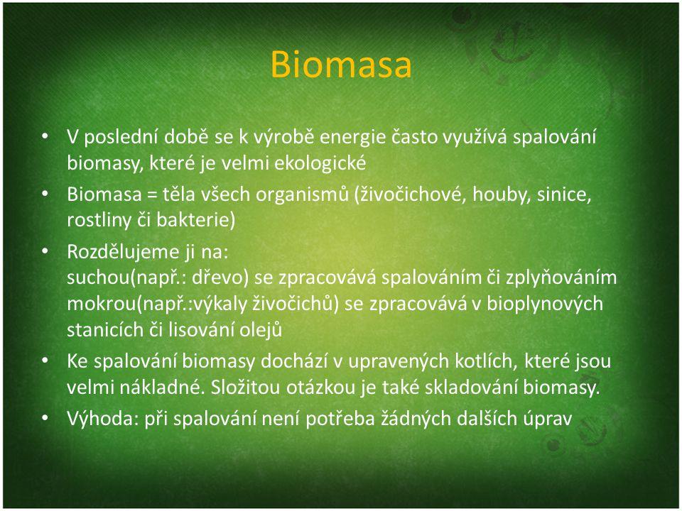 Biomasa V poslední době se k výrobě energie často využívá spalování biomasy, které je velmi ekologické Biomasa = těla všech organismů (živočichové, ho