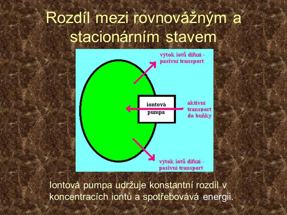 Fluktuace a poruchové síly Zobecněný Le Chatelierův princip Fluktuace - malé odchylky od rovnovážného nebo stacionárního stavu – mají vnitřní příčinu v náhodných procesech.