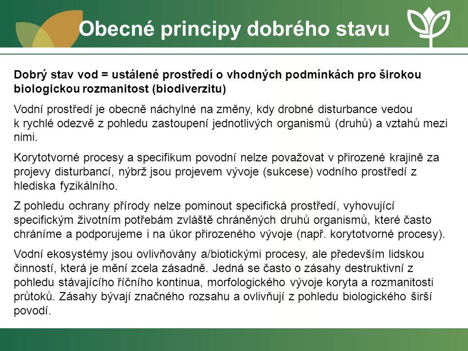 Obecné principy dobrého stavu Dobrý stav vod = ustálené prostředí o vhodných podmínkách pro širokou biologickou rozmanitost (biodiverzitu) Vodní prost