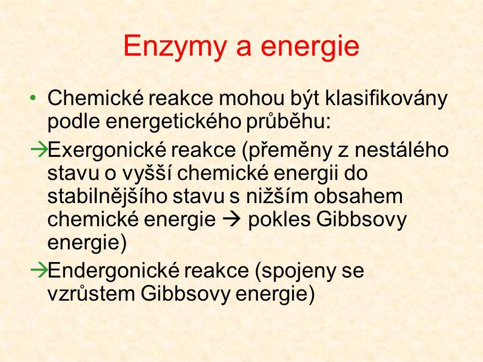 Reakční specifita Specifita k typu katalyzované reakce Přeměna jednoho substrátu několika enzymy s různou specifitou účinku na různé produkty Aminokys