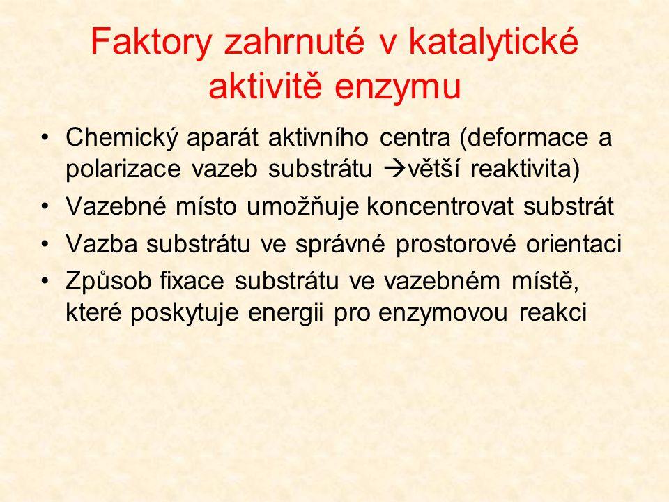 Aktivační energie Zdrojem aktivační energie je molekula enzymu Výměna energie mezi nekovalentně navázanými molekulami substrátu a přilehlými struktura