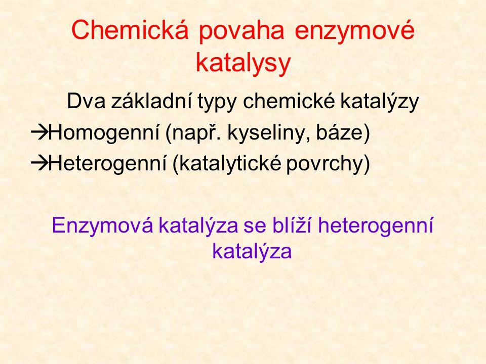 Faktory zahrnuté v katalytické aktivitě enzymu Chemický aparát aktivního centra (deformace a polarizace vazeb substrátu  větší reaktivita) Vazebné mí
